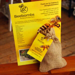 Bee Bombs